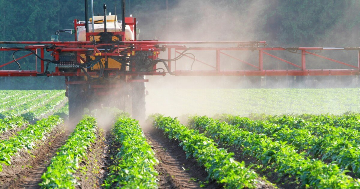 Dangers de l'emploi intensif des pesticides à usage agricole